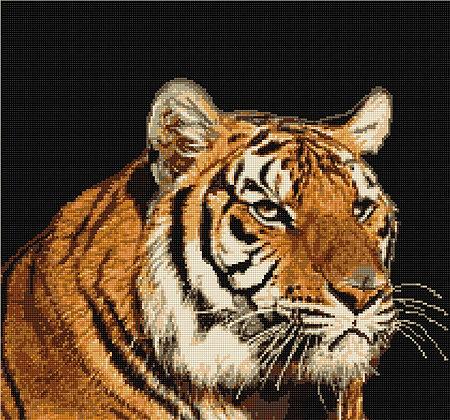 Tiger B334