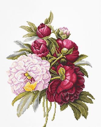 B2354 Bouquet of Peonies