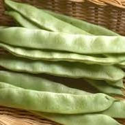 モロッコ豆