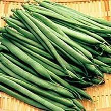 いんげん豆