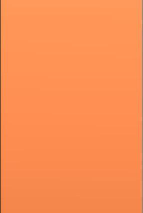 Sax Laquer Orange