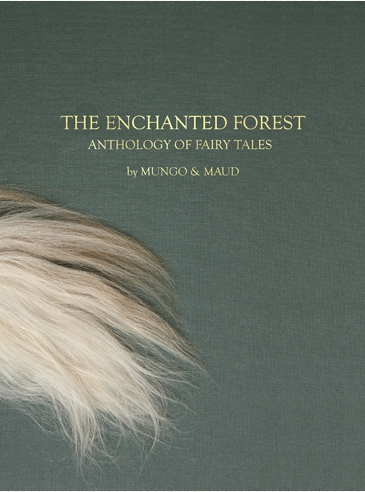 The Enchanted Forest Cover