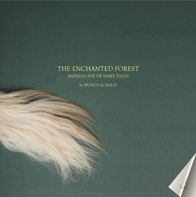 The Enchanted Forest Campaign