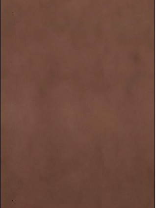 MOTUS Stained Metal Effect Copper