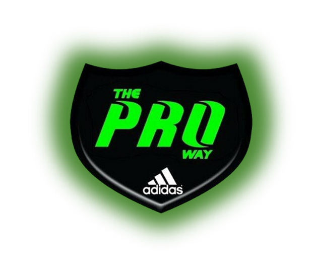 Proway Logo Transparetn Background.png