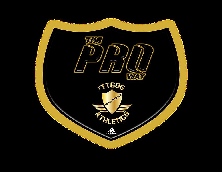 Proway_TTOG-Camp_Logo.png