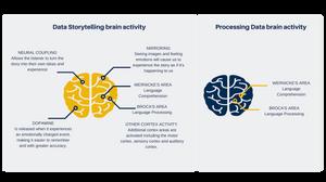 Data storytelling brain