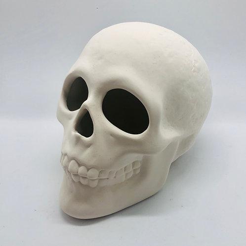 Skull 9.5cm