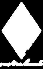 Diamond-Logo copy.png