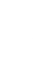 Diamond-Logo.png