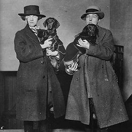 trowbridge-radclyffe-hall-dachshunds.jpg