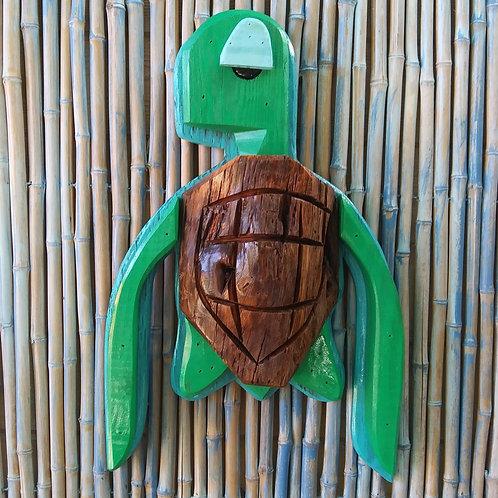 WHSL Thomas the Turtle