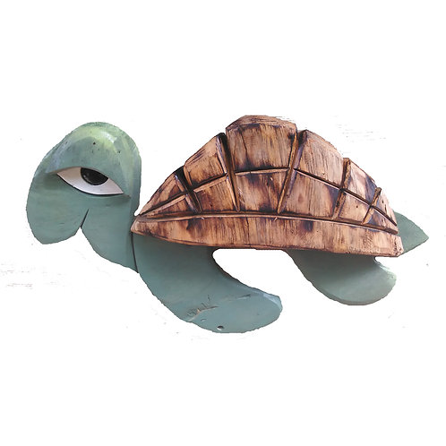 Hermie the SeaTurtle