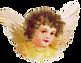 angel-1650620_1280.png