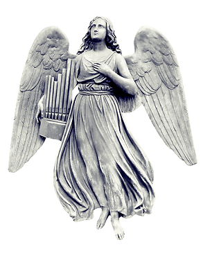 Angel Experienceスカイプセッション