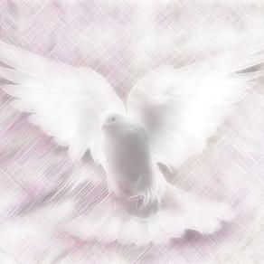 『優しさの向こう側』
