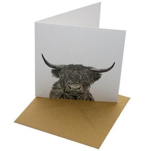 Highland cow blank card