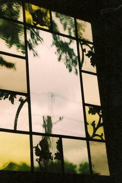 Zellie Window.jpg