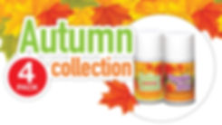 Big D® Autumn Collection