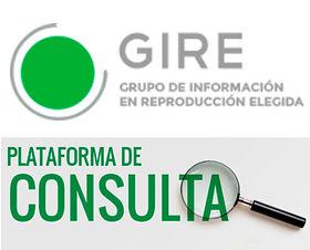 GIRE Consulta