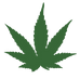 Hemp and CBD symbol