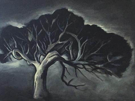 Saint Tree, Breamlea Series 2007