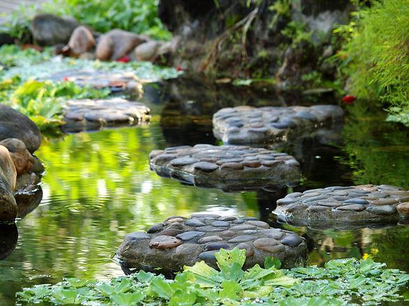 tropical style landscape backyard garden
