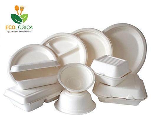 Desechables Biodegradables.png
