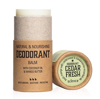 Scence Deodorant - Cedar Fresh