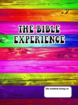 The Bible Experience Workbook