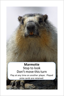 Event - Marmotte.png
