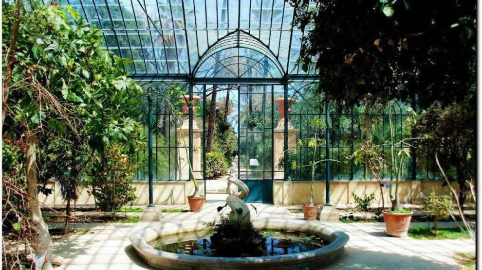 Orto Botanico Palermo: fonte palermo.liveuniversity.it