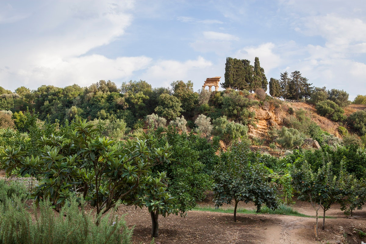 Giardino della Kolymbethra: fonte FondoAmbiente