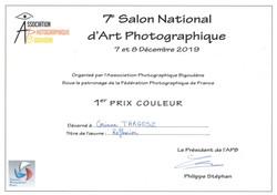 Diplôme 1er prix couleur 2019