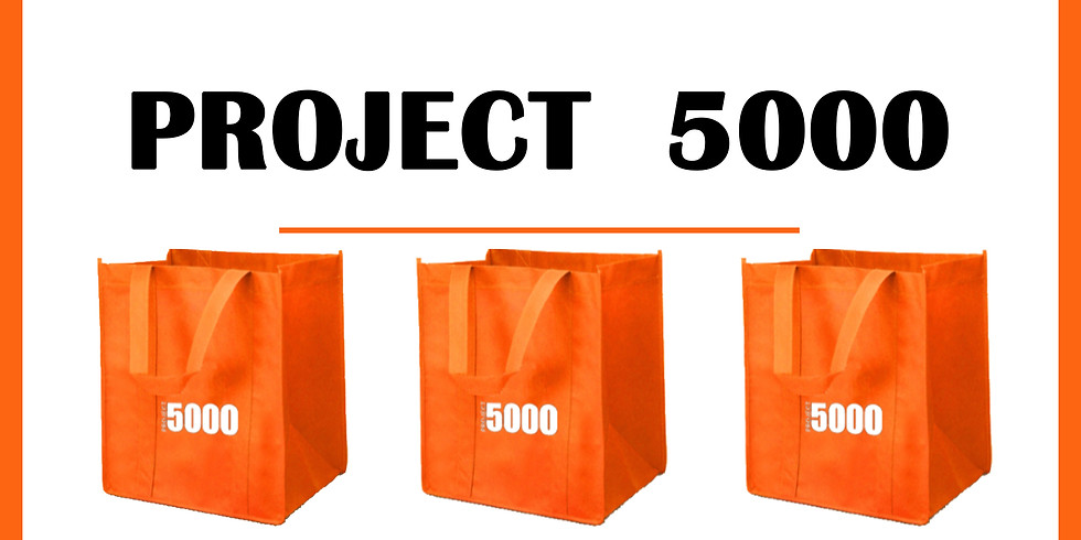 Project 5000