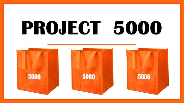 project 5000 ds.jpg