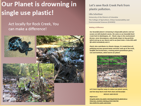 Earth Day Poster:Think globally, Act locally.