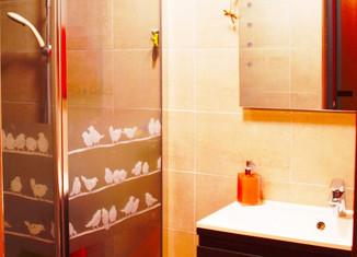 Un placard transformé en salle de bain