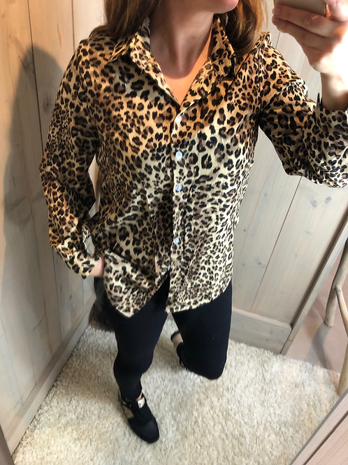 Bloes Leopard