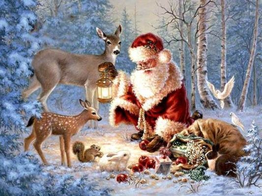 56377-Christmas-In-The-Forest