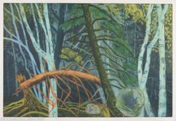 Three Birches, 2007