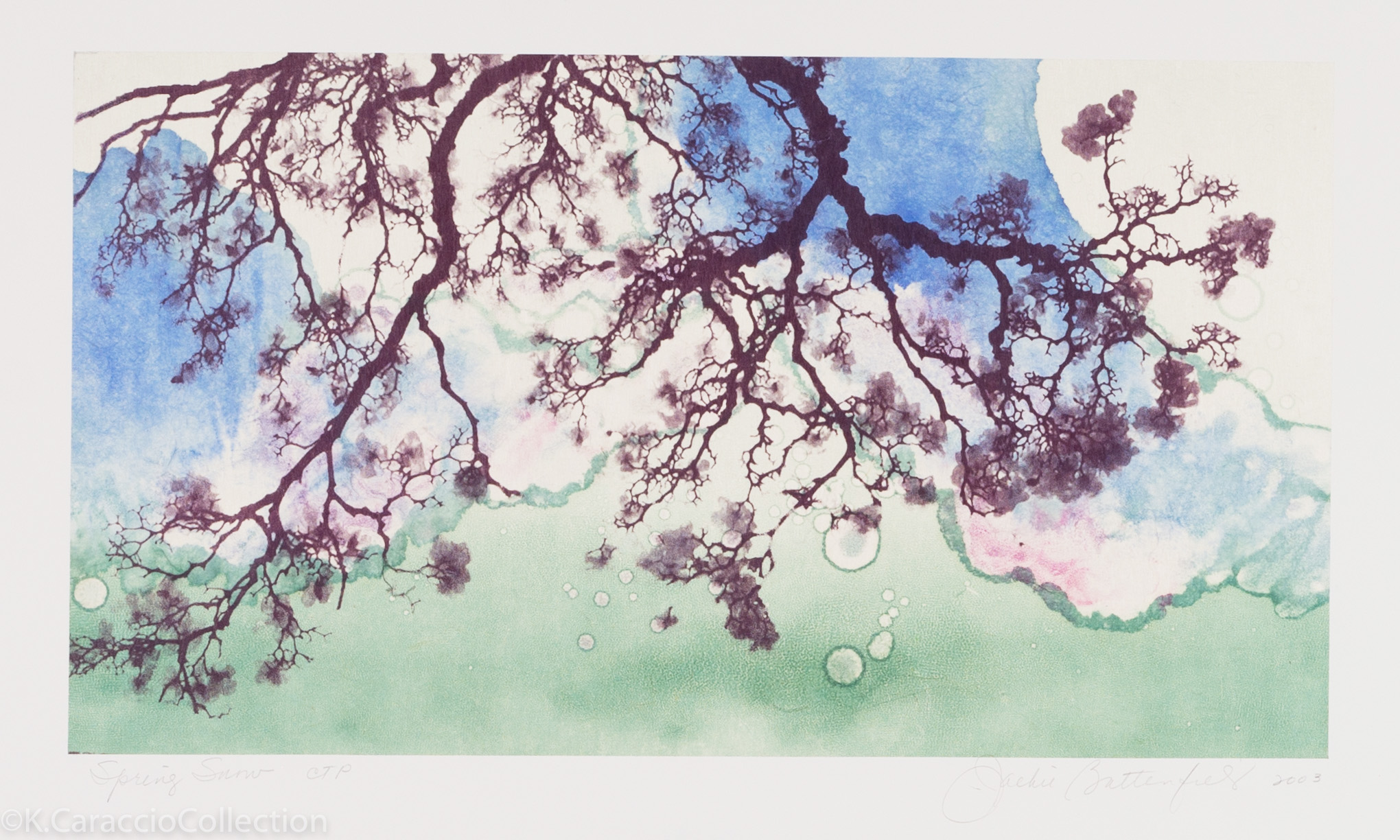 Spring Snow, 2003