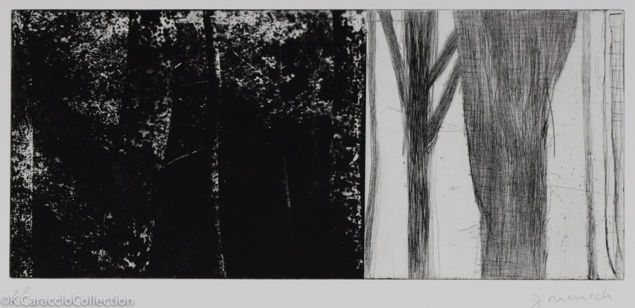 Italian Forest II, 2010