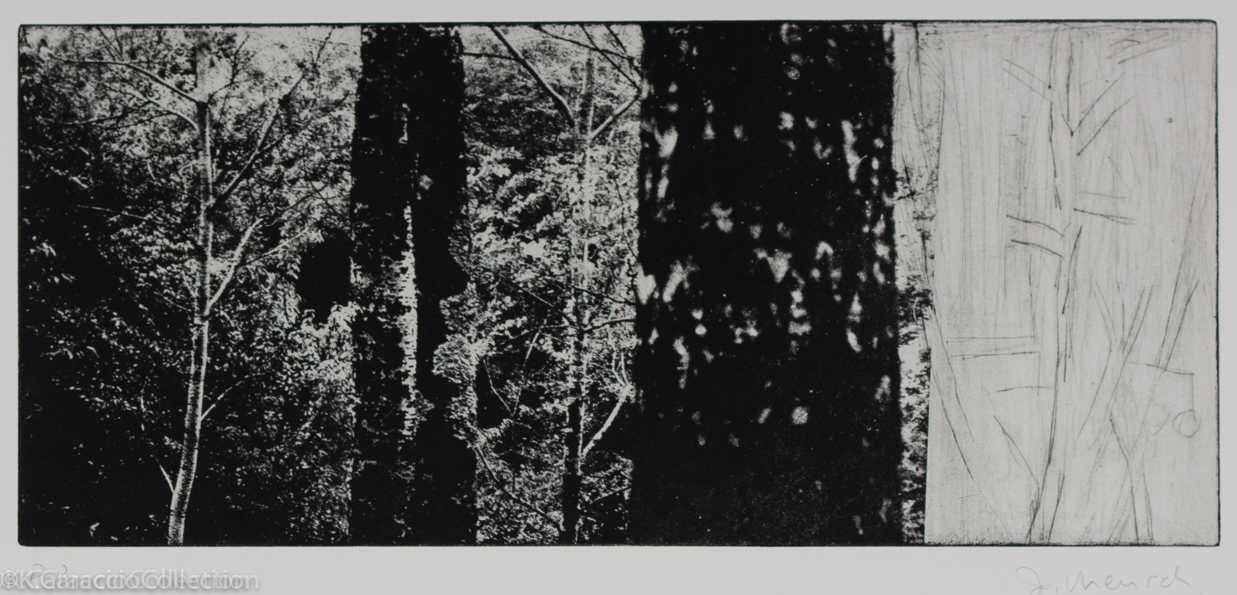 Italian Forest III, 2010
