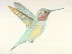 """Anna's Hummingbird"", 1982"