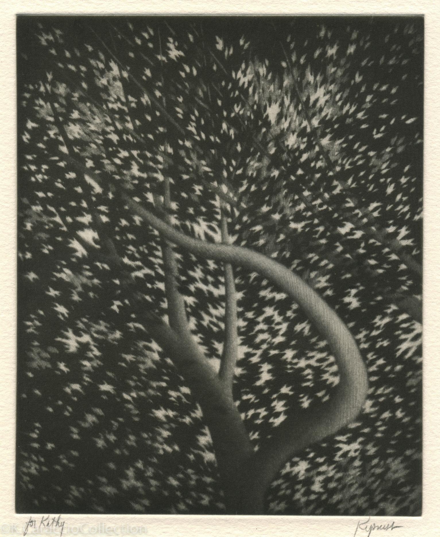 The Harp, 1997