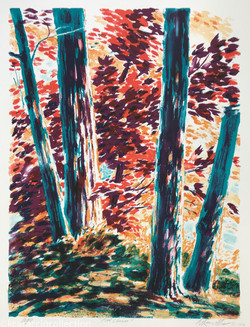 Red Leaves, 1979