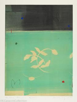 Natura Obscura XLVIII, 1998