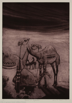 Return to Rajasthan, 1999