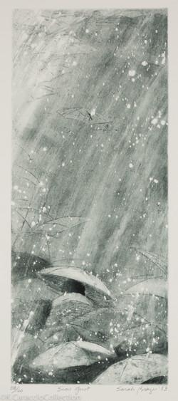 Snow Gust, 1983